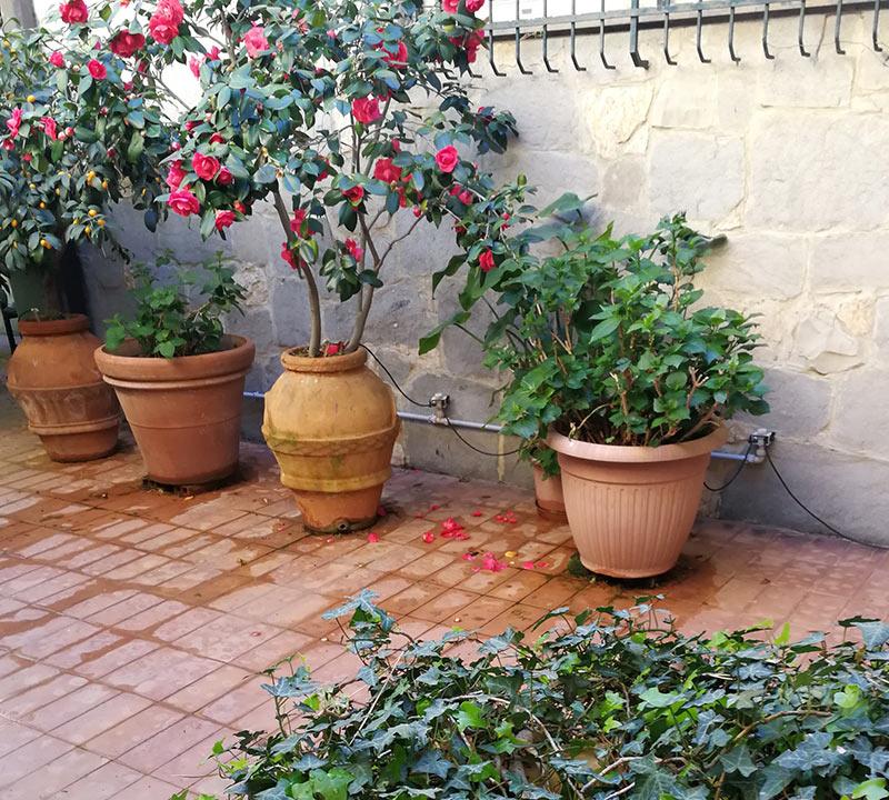 irrigatori quadrifoglio a traspirazione capillare irrigatore per piante e vasi