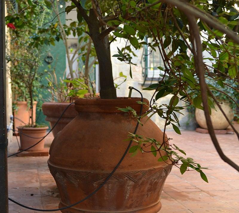 irrigazione grandi vasi retro